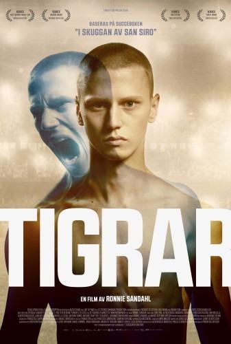 Affisch för Tigrar